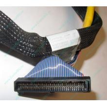 Кабель SCSI HP 166298-037 для HP ML370 G4 (Шахты)